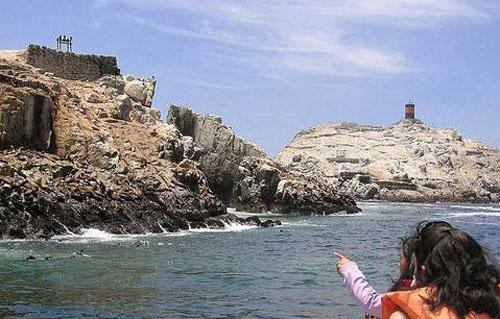 islas-palomino-callao-peru-foto-visitaelperu_info
