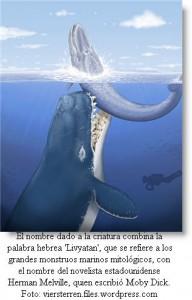 cachalote-gigante-peru-post