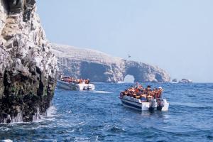 Disfrutar del mar y sol con la observación de leones marinos y aves en las Islas Ballestas de Paracas