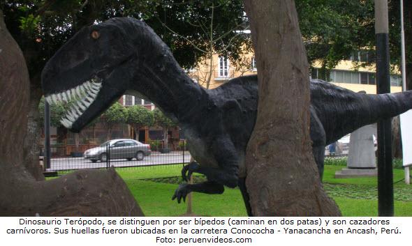 Foto de dinosaurio Terópodo de la Era Mesozoica encontrado en Ancash, Perú.