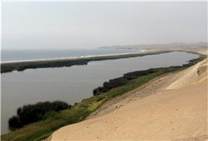 Humedal El Paraíso en Bandurria, Huaura, Lima - noticias