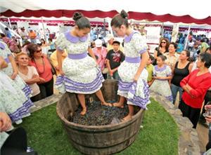 Cachina de Ica, bebida peruana - noticias
