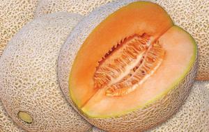 melon, fruta, previene el cáncer - noticias