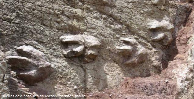 fósiles de dinosaurio en Ancash