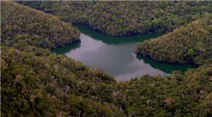 Sierra del Divisor es una cadena de montañas