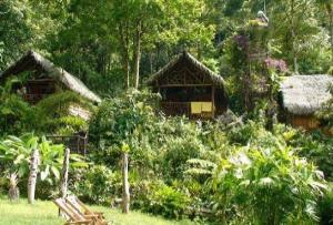 hotel en santuario de pampa hermosa en Junin