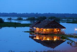 camari en Iquitos