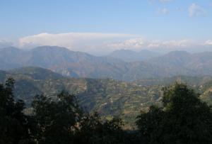 valle de palpa en Ica