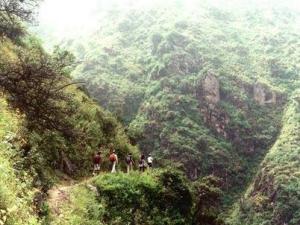 trecking en bosques de Lima