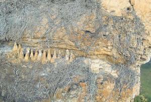 cultura chachapoyas estudiada por drones