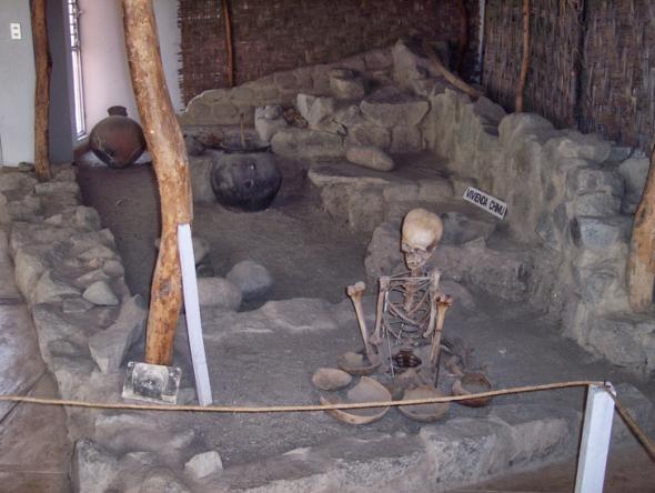 restos arqueológicos en museo Max Uhle