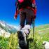 ¿Cuál es el deporte de aventura que prefieres en tu viaje?