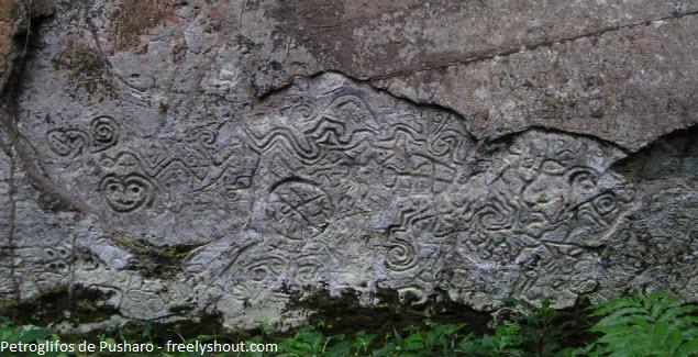 imagenes en la roca de la selva