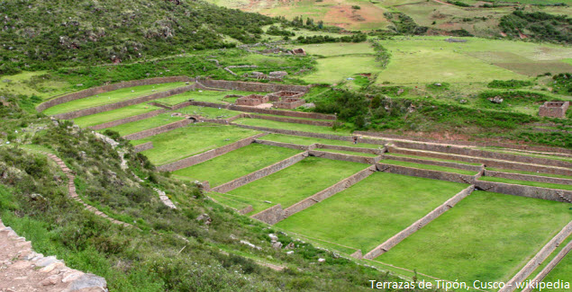Tipon terraces in Cusco