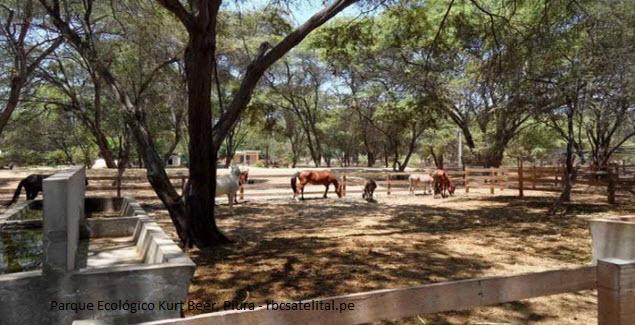 Turismo ecológico en Piura