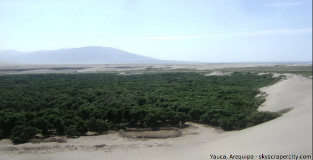 Yauca en Arequipa