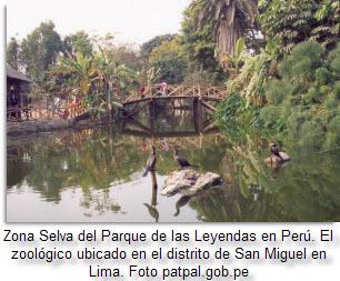 parque-de-las-leyendas-peru-foto-patpal_gob_pe-via-peruenvideos