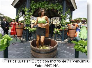 vendimia-en-surco-lima-peru_foto-andina-via-peruenvideos