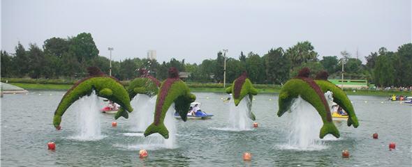 delfines-ornamentales-parque-leyendas