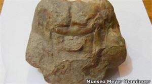 Cerebro fosilizado hallado en la región Amazonas