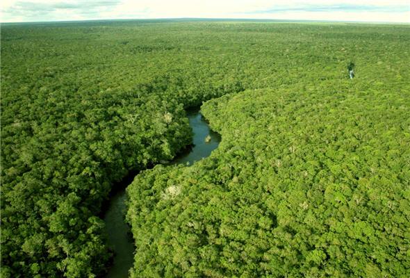 La Amazonía en concurso de las Siete Maravillas Naturales del Mundo