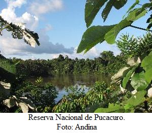 Pucacuro en Loreto en su primer año como Reserva Nacional - noticias