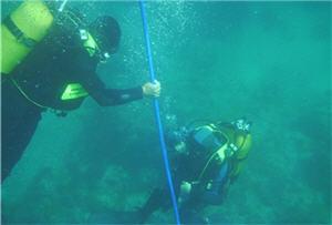 cable submarino, fibra óptica - noticias