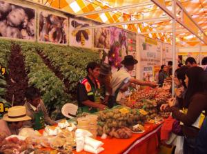 Mistura, gastronomía peruana - noticias