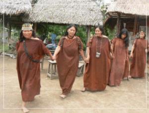 anshaninkas, comunidad indigena, chanchamayo, la merced - noticias