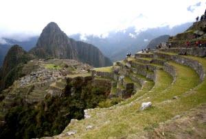 Machu Picchu, sitio arqueológico, liquenes - noticias