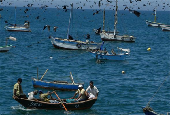 Feriado por el día del pescador - 29 de junio