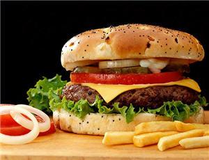 comida chatarra, dulces, hamburguesa, fritura, grasa - noticias
