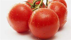 consumo de tomates ayuda a reducir enfermedades - noticias