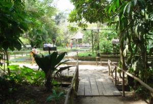 Caminos del zoológico de Quistococha