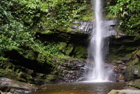 Cataratas de Ahuashiyacu, un encuentro con la naturaleza