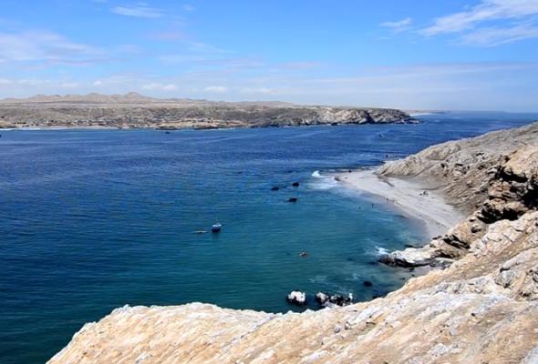 Documental muestra la biodiversidad de la Isla Foca en Piura