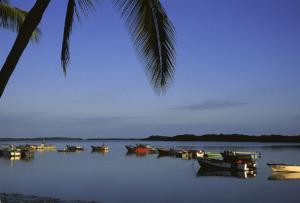 Foto panorámica de Puerto Pizarro, destino turístico de Tumbes al norte de Perú.