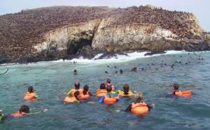 turistas nadando en las costas de la Isla Palomino