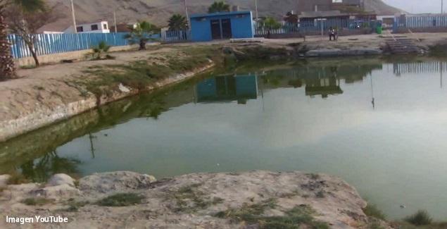 Lagunas de Barro de Chilca: La Mellicera