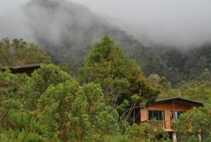 lodge en la selva peruana