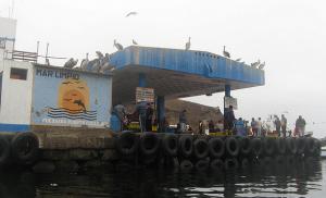 Bahia de Pucusana