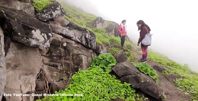 Foto de visitantes en las Lomas del Paraíso ubicado en Villa María del Triunfo en Lima, Perú