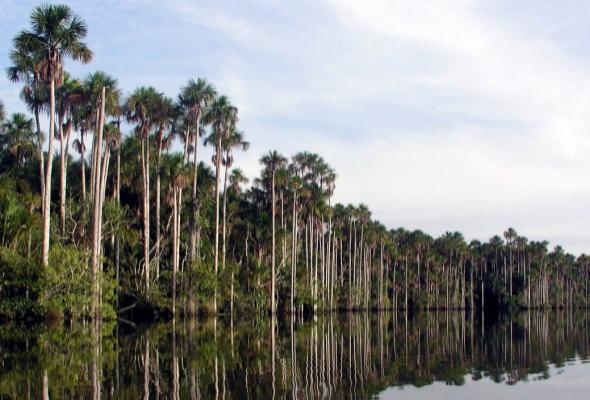 zona protegida del Perú con gran biodiversidad