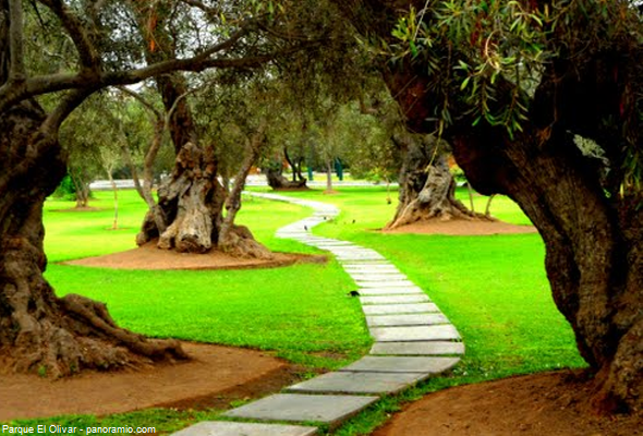 parque en Lima