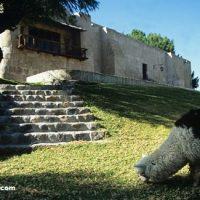Molino de Sabandía: Historia y Cómo Llegar en Arequipa