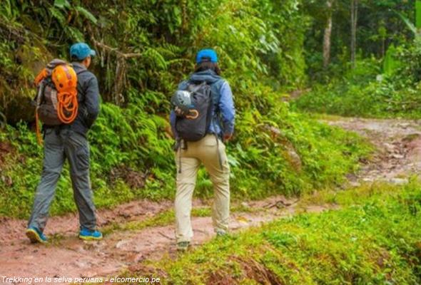 turismo en la selva peruana