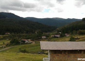 Informe de la Granja Porcón en Cajamarca