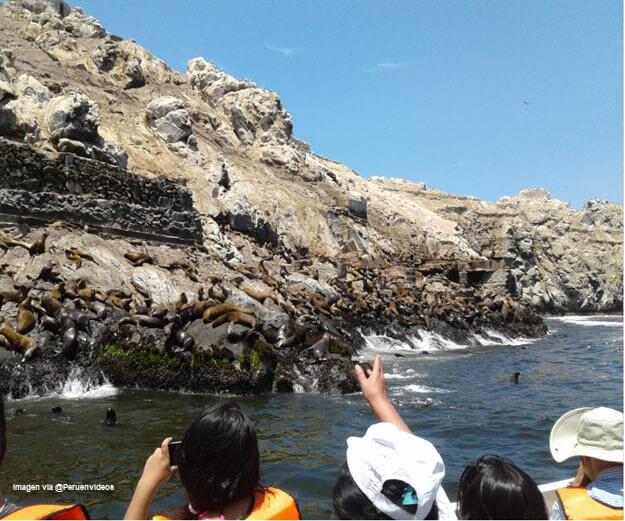 Turistas observando a los lobos marinos en las Islas Palomino, Callao, Perú.