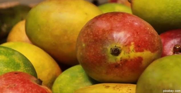 El Mango, fruta tropical muy beneficiosa para la salud