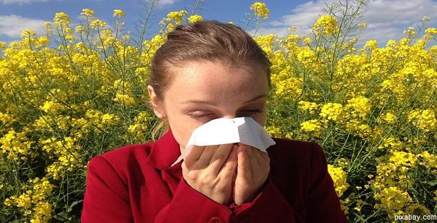 Sintomas y tratamientos para las alergias